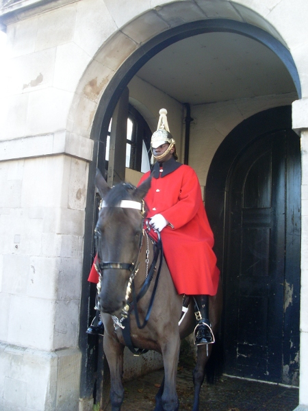 Horse Guard