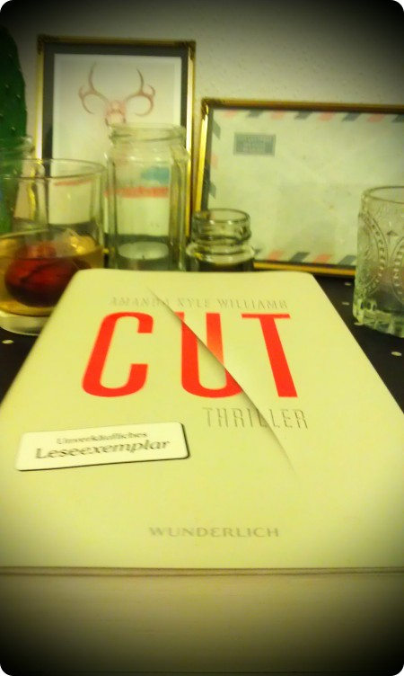 """Cut"" von Amanda Kyle Williams"