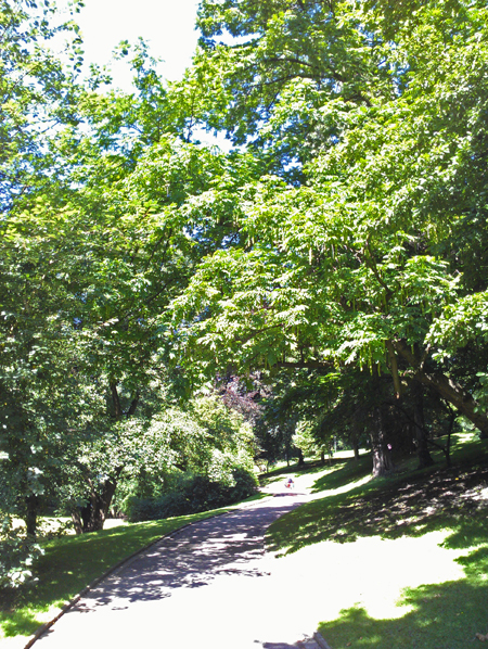 Weg im Stadtpark Bochum