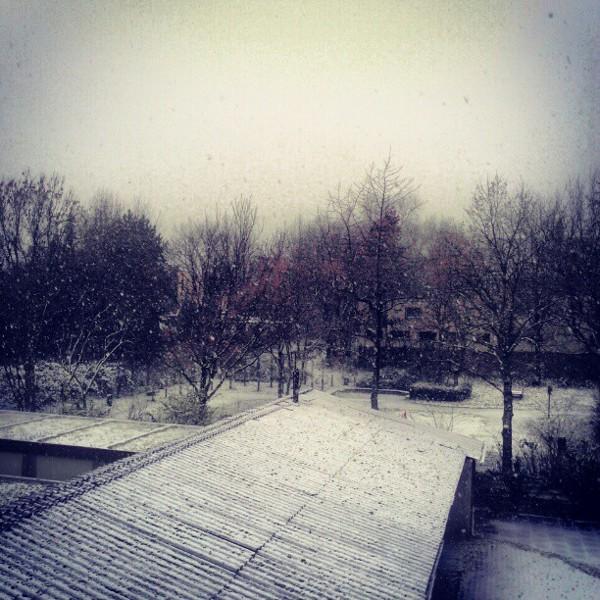 Schnee im Hinterhof